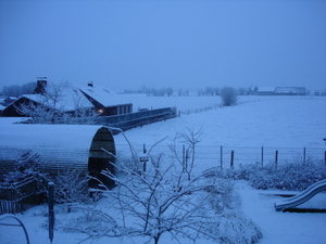 Winter_24_januari